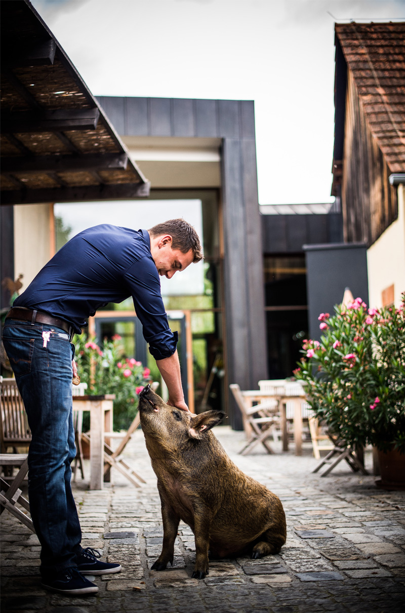 Schweinernes_Mitte_800